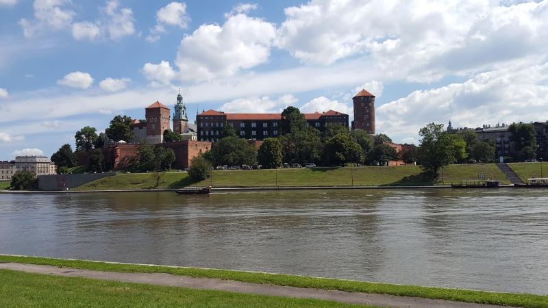 Opinia ornitologiczna Kraków