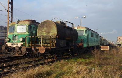Nadzór przyrodniczy modernizacja lini kolejowej